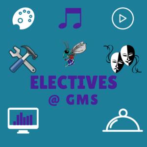 gms electives (2)